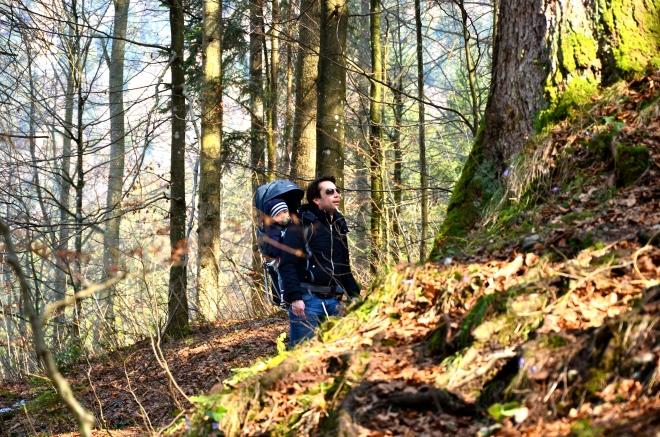 Wanderung Schliersee