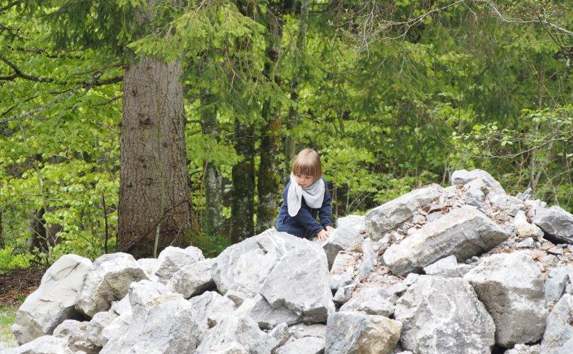 Forest kindergarten oder einfach Waldkindergarten